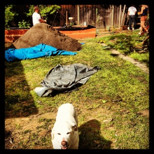 Kirbie the mascot, a large pile of dirt, and lots of discussion