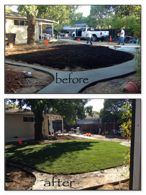 beforeaftersod